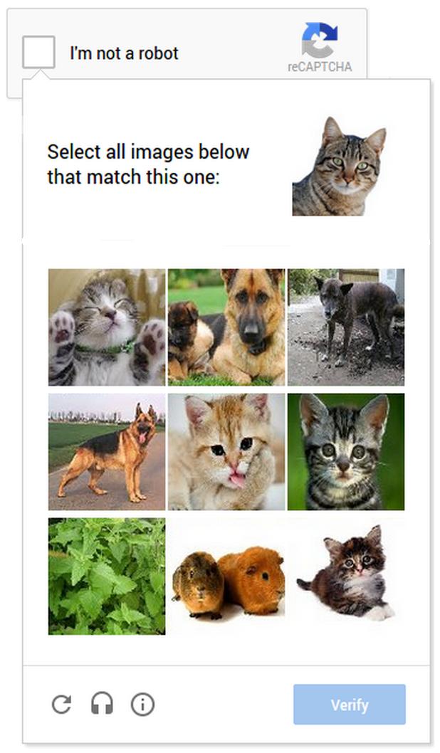 cat_captcha
